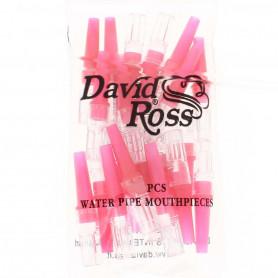 Pack de 24 filtres à chicha anti nicotine et goudron David Ross