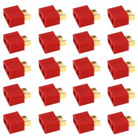 Pack Cosses Deans T Femelle x50